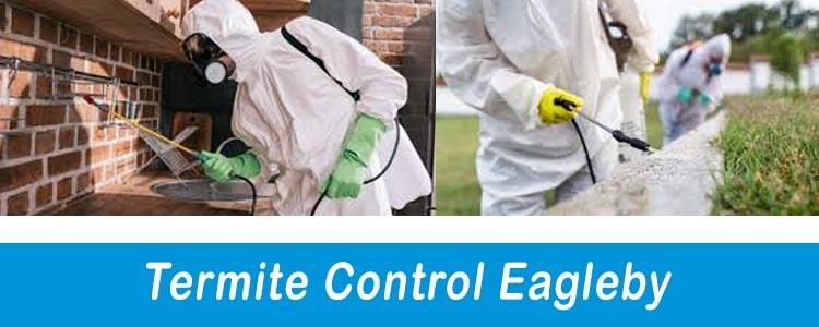 Termite Control Eagleby